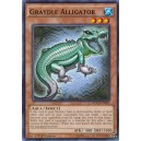 Graydle Alligator