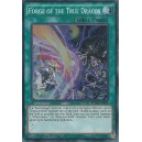Forge of the True Dracos