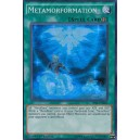 Metamorformation
