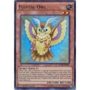 Fluffal Owl
