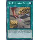 Big Evolution Pill
