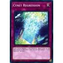 Cynet Regression