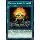 Machine Angel Ritual