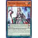 Magical Abductor