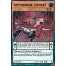 Amorphage Lechery