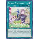 Aroma Gardening