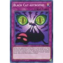 Black Cat-astrophe