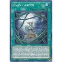 Black Garden