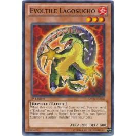 Evoltile Lagosucho