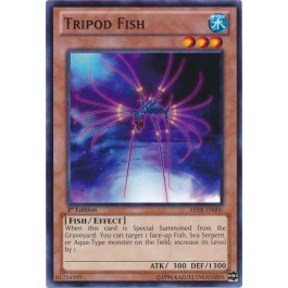 Tripod Fish