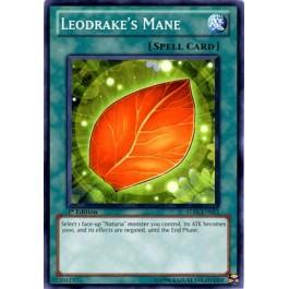 Leodrake's Mane