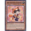 Baby Raccoon Ponpoko