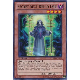 Secret Sect Druid Dru