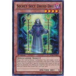 Secret Sect Druid Dru - ESP