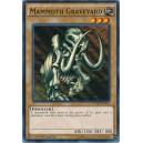 Mammoth Graveyard