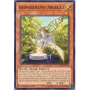 Aromaseraphy Angelica