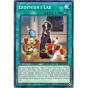 Endymion's Lab