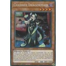 Chamber Dragonmaid