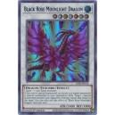 Black Rose Moonlight Dragon