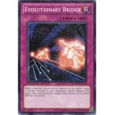 Evolutionary Bridge