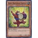 Baby Raccoon Tantan